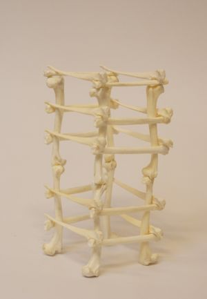 Bone Tower